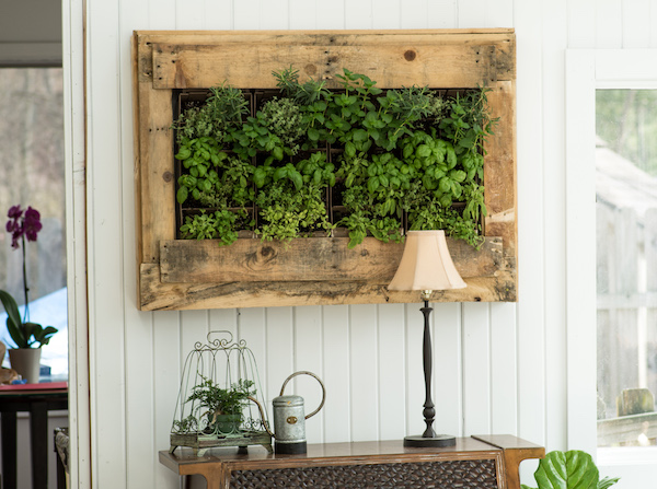 Herb Wall Planter